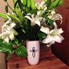 Judy flowers