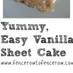 Yummy, Easy Vanilla Sheet Cake